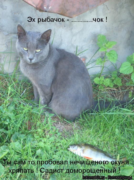 Котоматрица: Эх рыбачок - ...........чок ! Ты сам то пробовал нечищеного окуня хряпать ! Садист доморощенный !