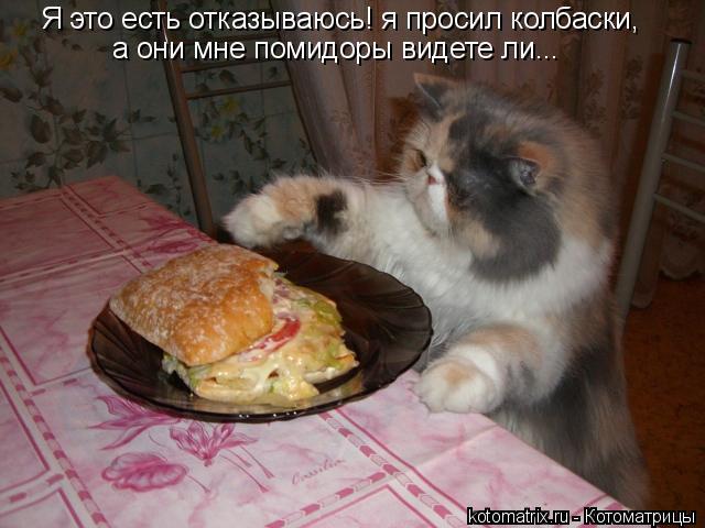 Котоматрица: Я это есть отказываюсь! я просил колбаски, а они мне помидоры видете ли...
