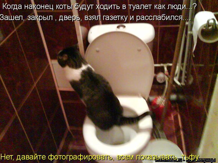 Котоматрица: Когда наконец коты будут ходить в туалет как люди...? Зашел, закрыл , дверь, взял газетку и расслабился.... Нет, давайте фотографировать, всем п