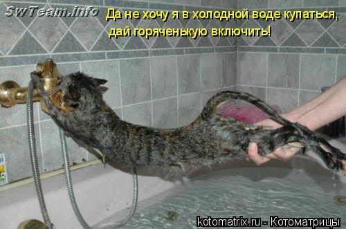 Котоматрица: Да не хочу я в холодной воде купаться,  дай горяченькую включить!