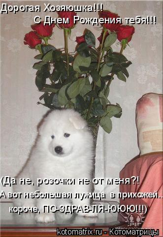 Котоматрица: Дорогая Хозяюшка!!!  С Днем Рождения тебя!!! (Да не, розочки не от меня?! А вот небольшая лужица  в прихожей.., короче, ПО-ЗДРАВ-ЛЯ-ЮЮЮ!!!)