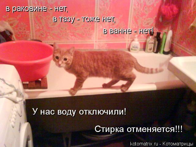 Котоматрица: в раковине - нет,  в тазу - тоже нет,  в ванне - нет! У нас воду отключили! Стирка отменяется!!!