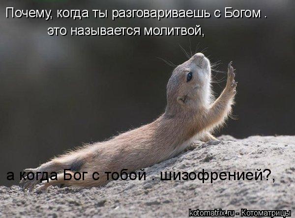 Котоматрица: Почему, когда ты разговариваешь с Богом –  это называется молитвой, а когда Бог с тобой – шизофренией?,
