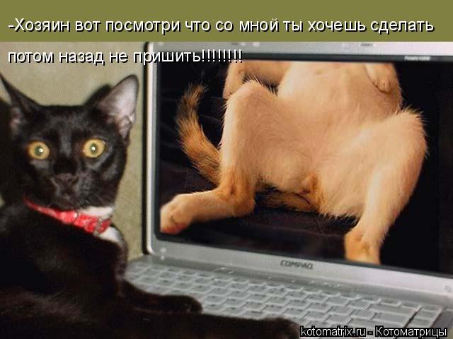 Котоматрица: -Хозяин вот посмотри что со мной ты хочешь сделать потом назад не пришить!!!!!!!!