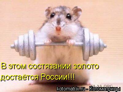 Котоматрица: В этом состязании золото достаётся России!!!