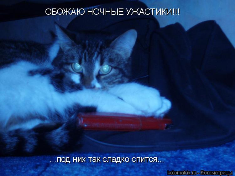 Котоматрица: ОБОЖАЮ НОЧНЫЕ УЖАСТИКИ!!! ...под них так сладко спится...