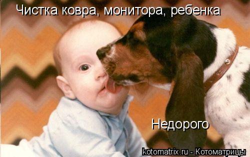 Котоматрица: Чистка ковра, монитора, ребенка Недорого