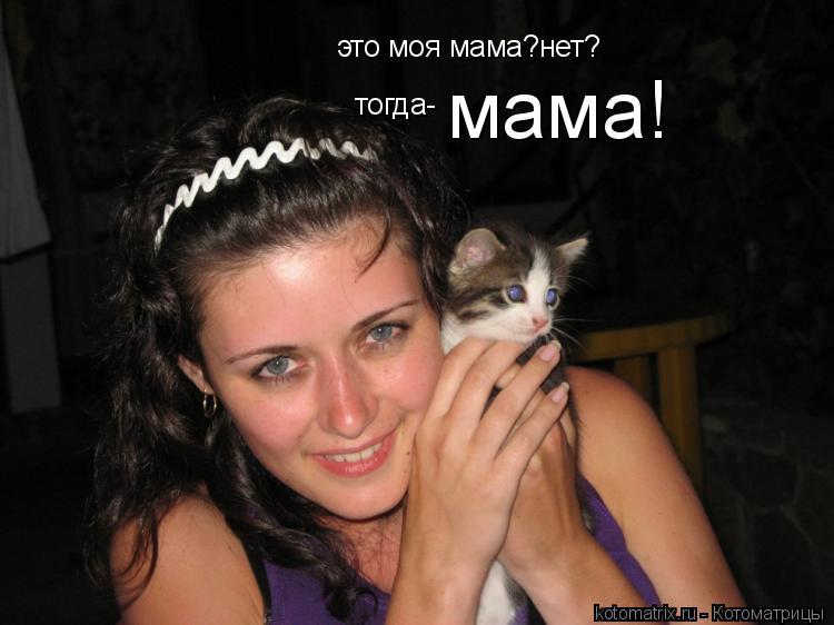 Котоматрица: это моя мама?нет? тогда- мама!