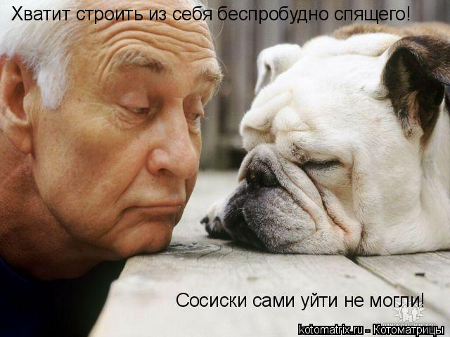 Котоматрица: Хватит строить из себя беспробудно спящего! Сосиски сами уйти не могли!