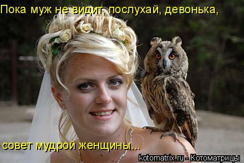 Котоматрица: Пока муж не видит, послухай, девонька, совет мудрой женщины...