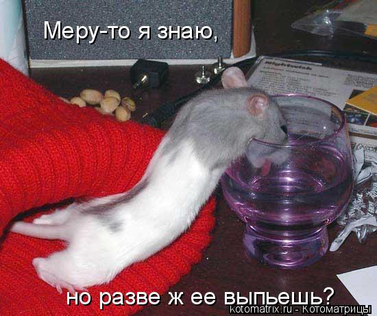 Котоматрица: Меру-то я знаю,  но разве ж ее выпьешь?