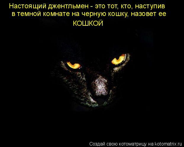 Котоматрица: КОШКОЙ в темной комнате на черную кошку, назовет ее  Настоящий джентльмен - это тот, кто, наступив