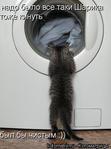 Котоматрица: надо было все таки Шарика тоже кинуть был бы чистым :))