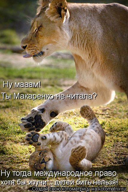 Котоматрица: Ну мааам! Ты Макаренко не читала? Ну тогда международное право хотя бы изучи... детей бить нельзя!