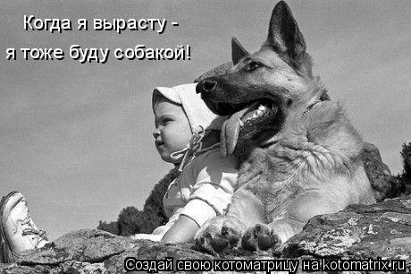 Котоматрица: Когда я вырасту -  я тоже буду собакой!