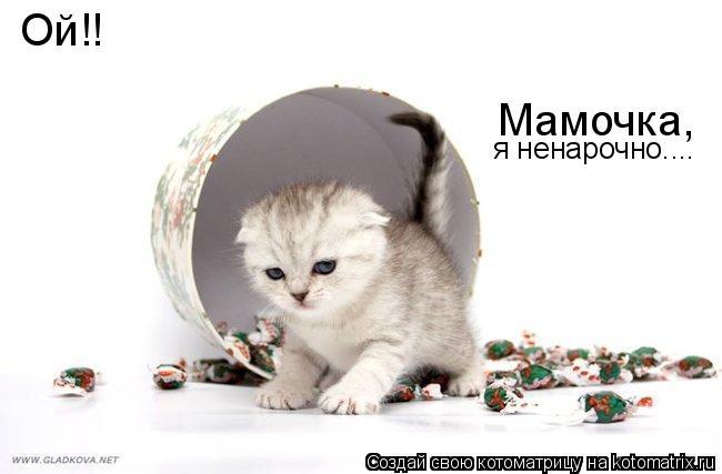 Котоматрица: Ой!! Мамочка, я ненарочно....