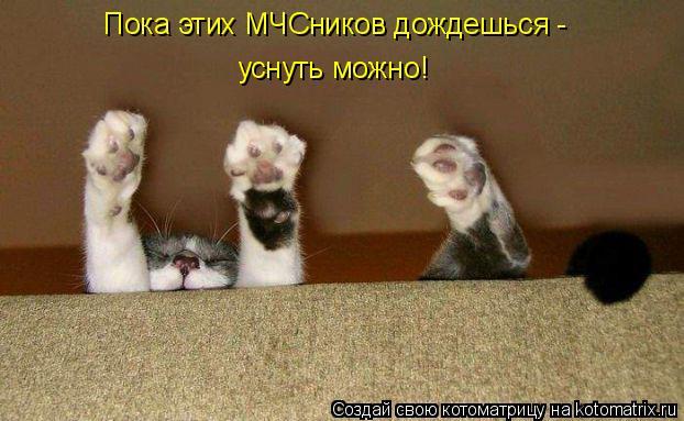Котоматрица: Пока этих МЧСников дождешься - уснуть можно!