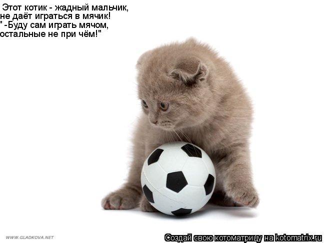 """Котоматрица: Этот котик - жадный мальчик, не даёт играться в мячик! """" -Буду сам играть мячом, остальные не при чём!"""""""