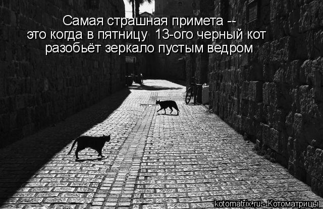Котоматрица: это когда в пятницу  13-ого черный кот  разобьёт зеркало пустым ведром Самая страшная примета --