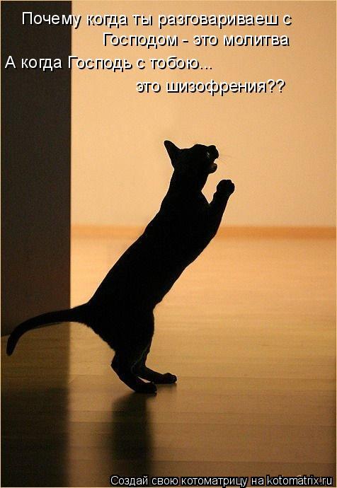 Котоматрица: Почему когда ты разговариваеш с  Господом - это молитва А когда Господь с тобою... это шизофрения??