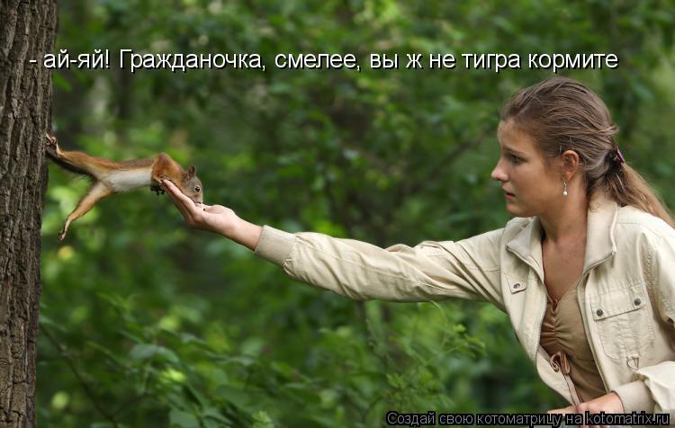 Котоматрица: - ай-яй! Гражданочка, смелее, вы ж не тигра кормите