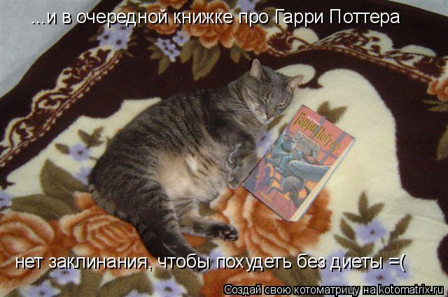 Котоматрица: ...и в очередной книжке про Гарри Поттера нет заклинания, чтобы похудеть без диеты =(