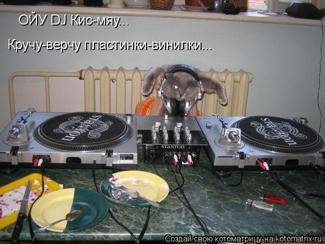 Котоматрица: Кручу-верчу пластинки-винилки... ОЙУ DJ Кис-мяу...