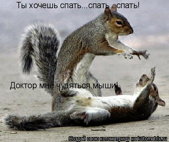 Котоматрица: Ты хочешь спать...спать...спать! Доктор мне чудяться мыши!