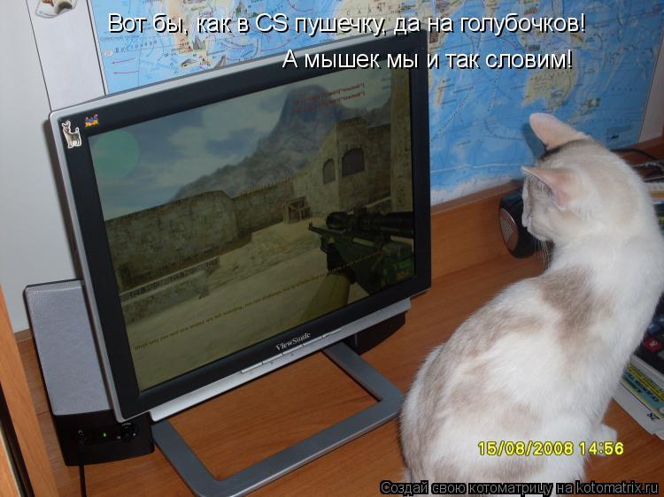 Котоматрица: Вот бы, как в CS пушечку, да на голубочков! А мышек мы и так словим!