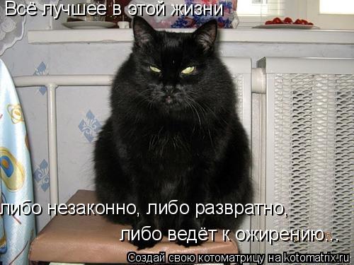 Котоматрица: Всё лучшее в этой жизни либо незаконно, либо развратно, либо ведёт к ожирению...