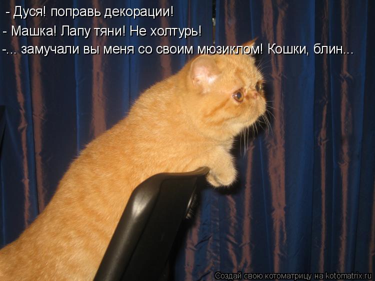 Котоматрица: - Дуся! поправь декорации! - Машка! Лапу тяни! Не холтурь! -... замучали вы меня со своим мюзиклом! Кошки, блин...