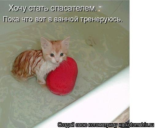 Котоматрица: Хочу стать спасателем. Пока что вот в ванной тренеруюсь.