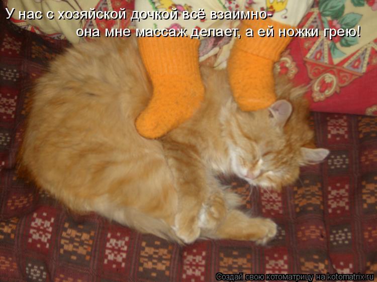 Котоматрица: У нас с хозяйской дочкой всё взаимно- она мне массаж делает, а ей ножки грею!