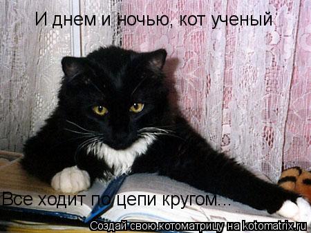 Котоматрица: И днем и ночью, кот ученый Все ходит по цепи кругом...