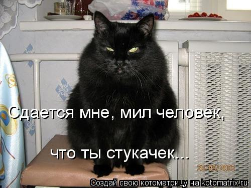 http://kotomatrix.ru/images/lolz/2008/08/15/b2.jpg