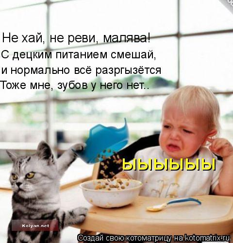 Котоматрица: Не хай, не реви, малява! С децким питанием смешай,  и нормально всё разргызётся Тоже мне, зубов у него нет.. ыыыыыы
