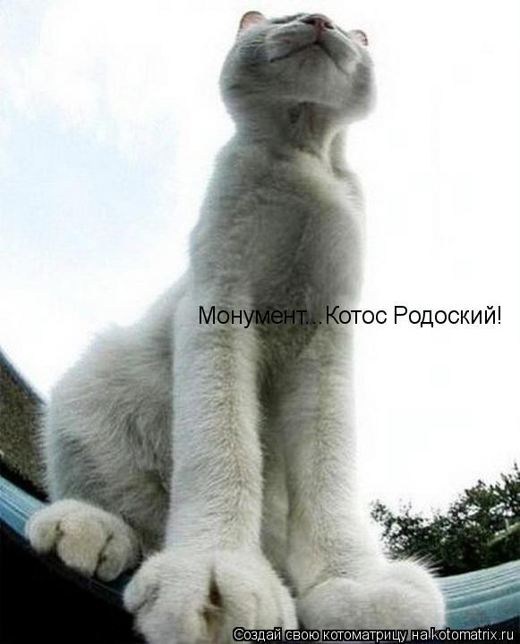 Котоматрица: Монумент...Котос Родоский!