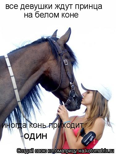 Котоматрица: все девушки ждут принца на белом коне иногда конь приходит один