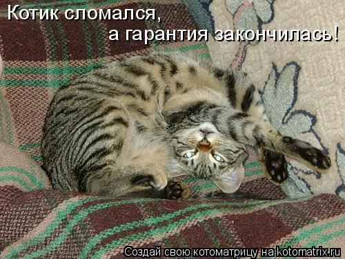 Котоматрица: Котик сломался, а гарантия закончилась!