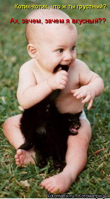 Котоматрица: Котик-котик, что ж ты грустный? Ах, зачем, зачем я вкусный??
