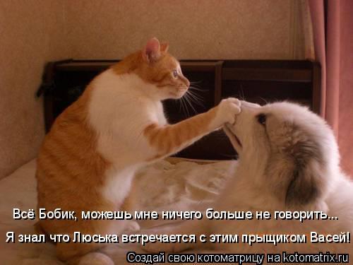 Котоматрица: Я знал что Люська встречается с этим прыщиком Васей! Всё Бобик, можешь мне ничего больше не говорить...