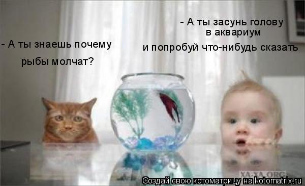 Котоматрица: - А ты знаешь почему  рыбы молчат? - А ты засунь голову  в аквариум и попробуй что-нибудь сказать