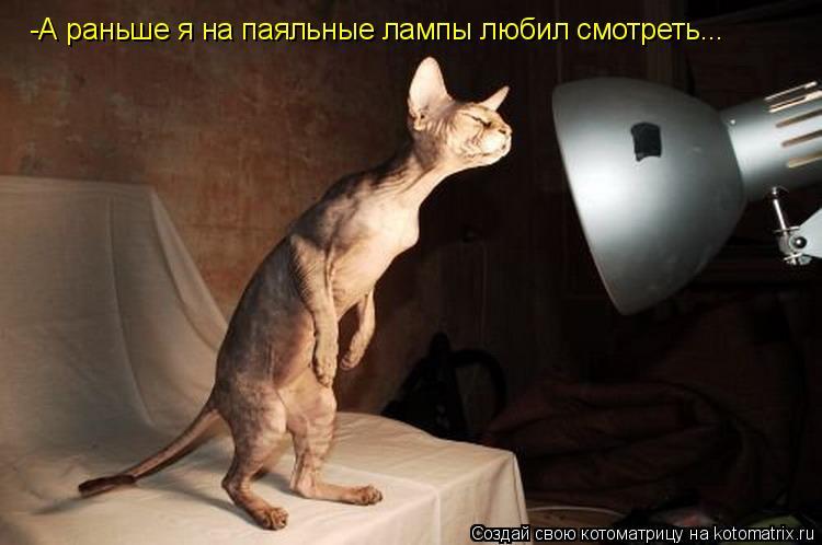 Котоматрица: -А раньше я на паяльные лампы любил смотреть...