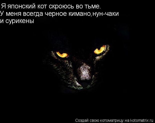 Котоматрица: Я японский кот скроюсь во тьме. У меня всегда черное кимано,нун-чаки и сурикены
