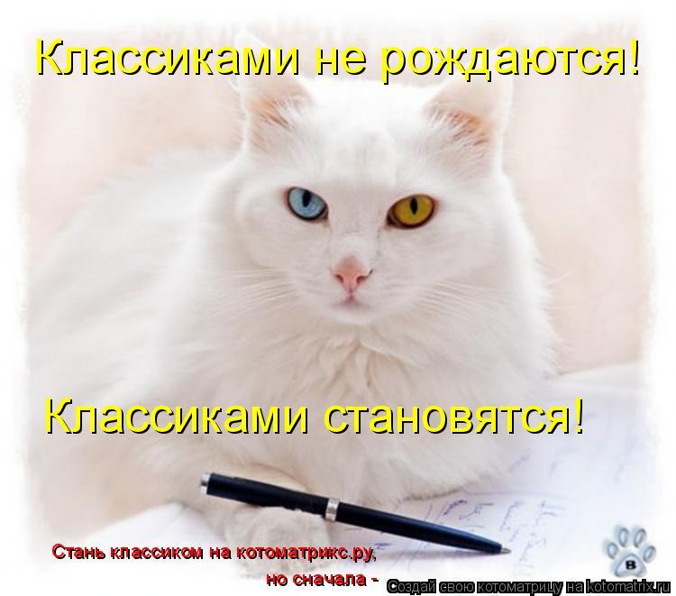 Котоматрица: Стань классиком на котоматрикс.ру, но сначала - Классиками не рождаются! Классиками становятся!
