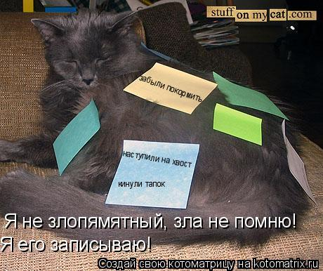 Котоматрица: Я не злопямятный, зла не помню! Я его записываю! наступили на хвост забыли покормить кинули тапок