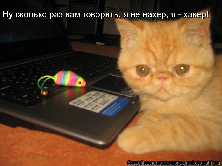 Котоматрица: Ну сколько раз вам говорить, я не нахер, я - хакер!