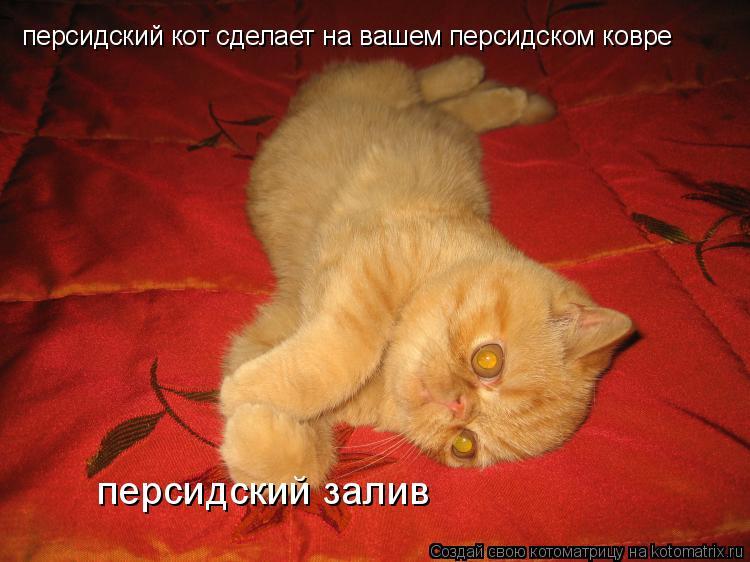 Секс на персидском ковре фото 4 фотография