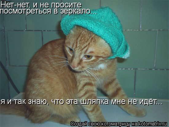 Котоматрица: Нет-нет, и не просите посмотреться в зеркало... я и так знаю, что эта шляпка мне не идёт...