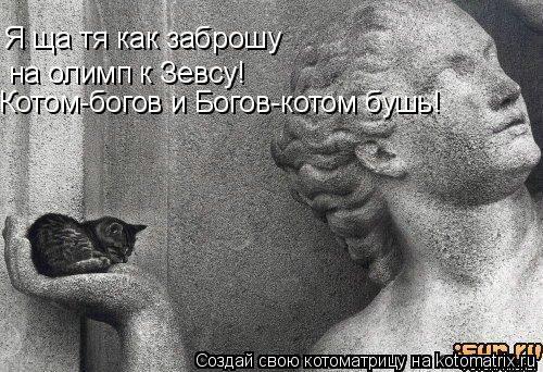 Котоматрица: Я ща тя как заброшу на олимп к Зевсу! Котом-богов и Богов-котом бушь!